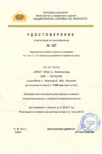 File33